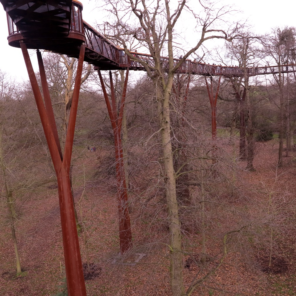 The treetop walk which sways gently in the wind - a little frightening!