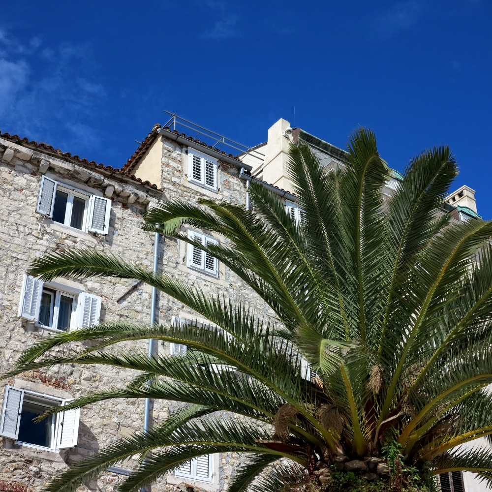 Split's waterfront is a sun soaked paradise - when the sun cooperates of course...