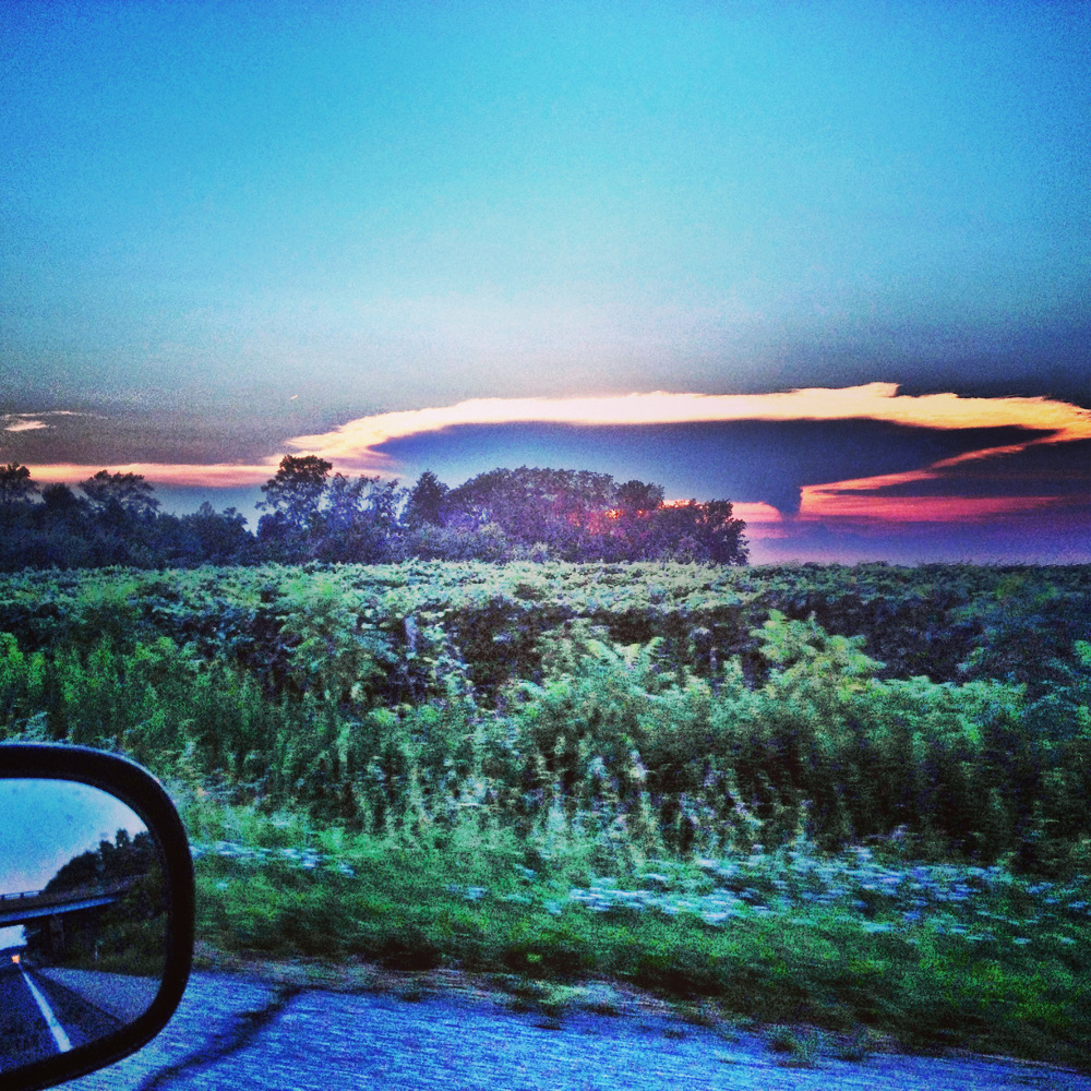 Road trip view Double-Barrelled Travel