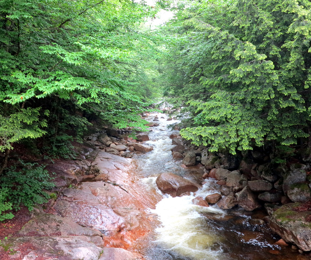 The view from the Bridge at The Flume in New Hampshire Double-Barrelled Travel