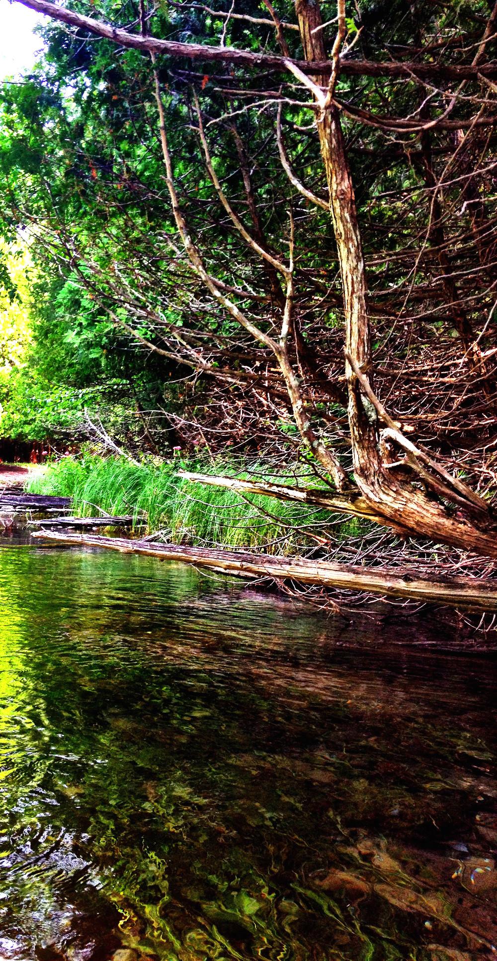Scenery on Crystal River Glen Arbor Double-Barrelled Travel