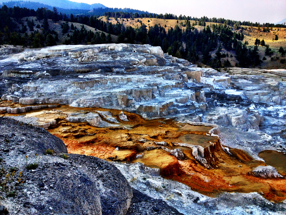 Mammoth hot springs2 at Yellowstone Double-Barrelled Travel