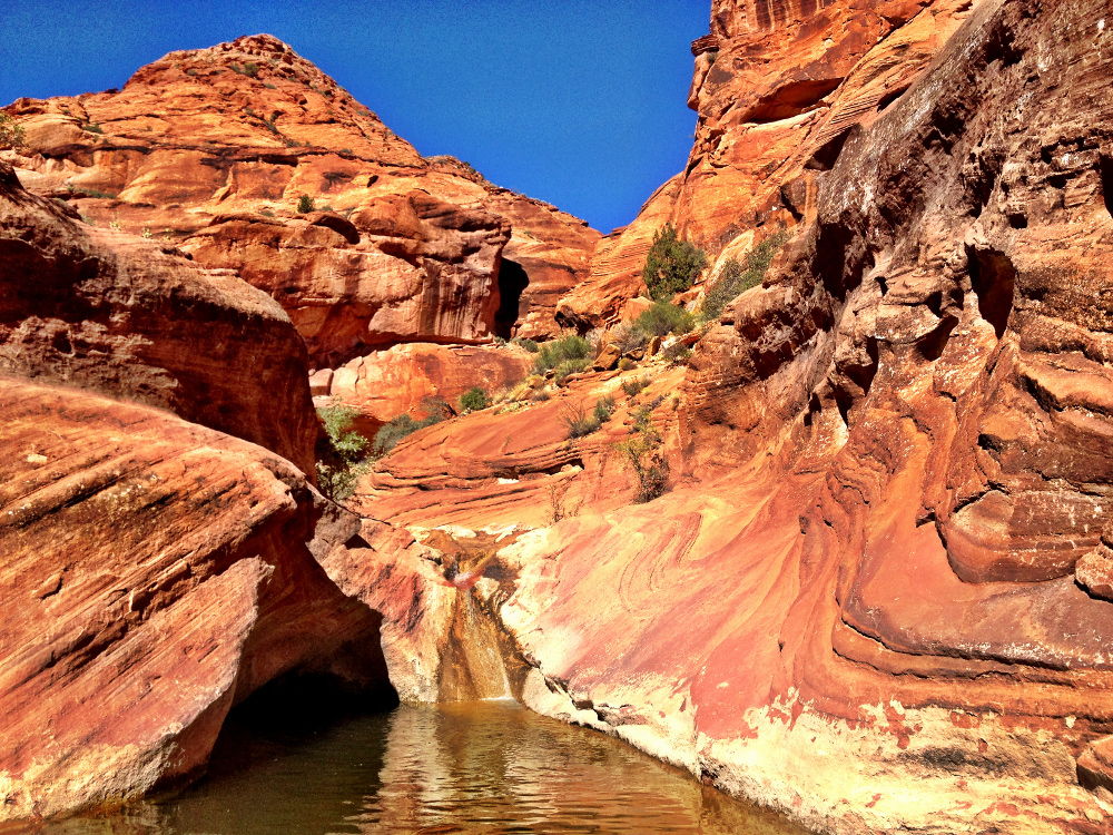 A pool found on the Red Cliffs hike  Double-Barrelled Travel