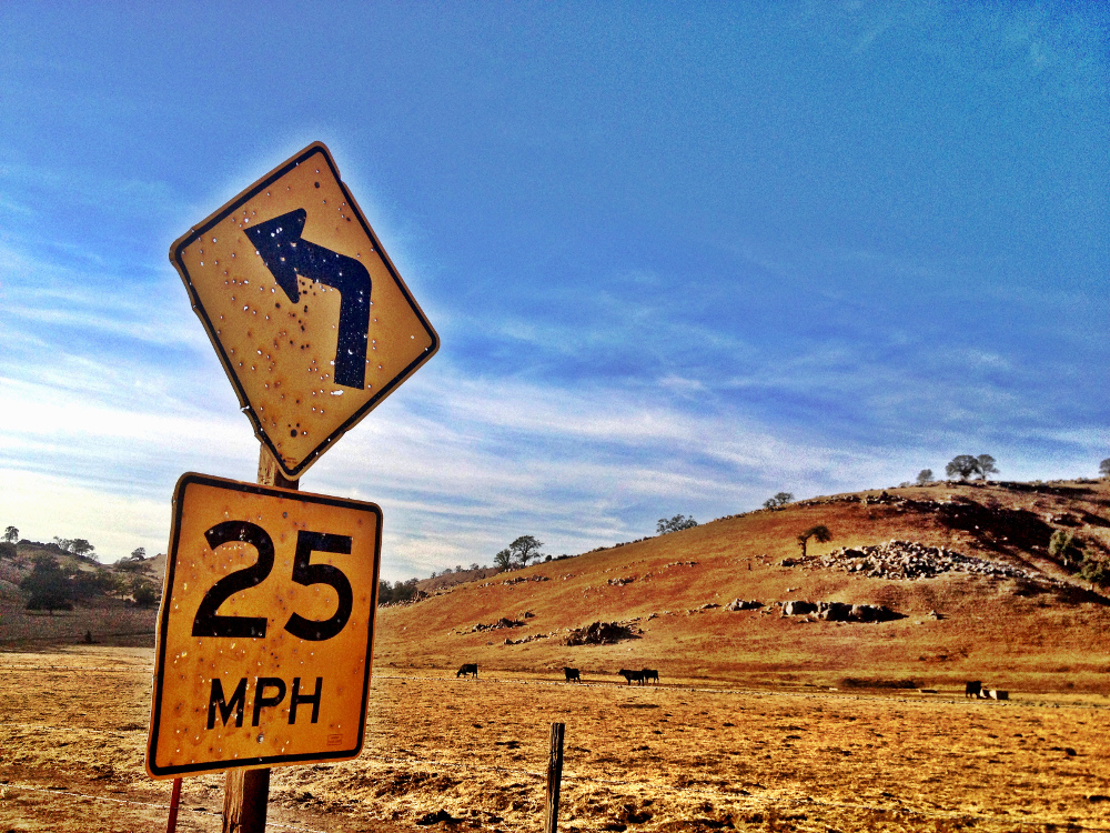 A shot up sign in the USA Double-Barrelled Travel