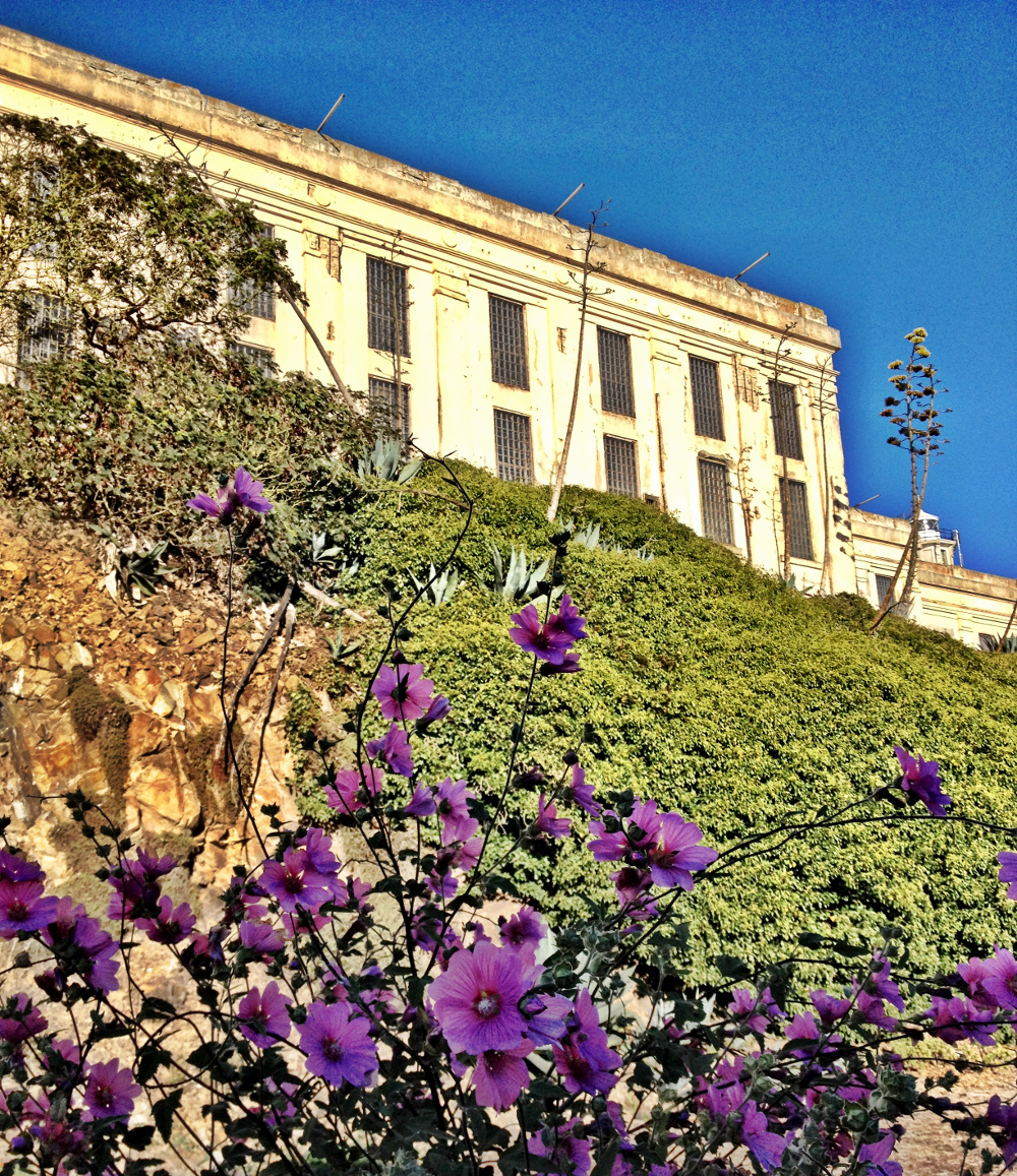 Alcatraz gardens Double-Barrelled Travel