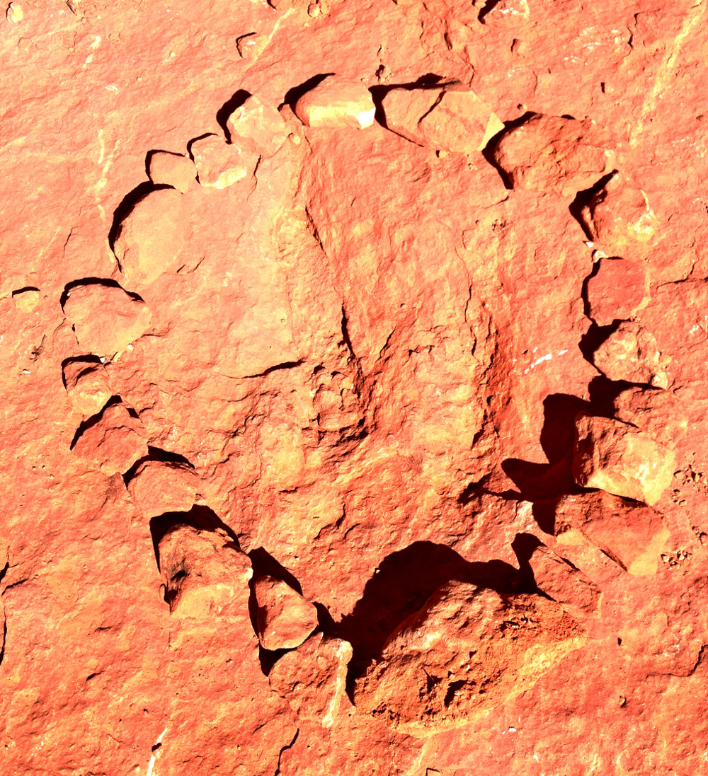 Dinosaur footprint in Utah  Double-Barrelled Travel