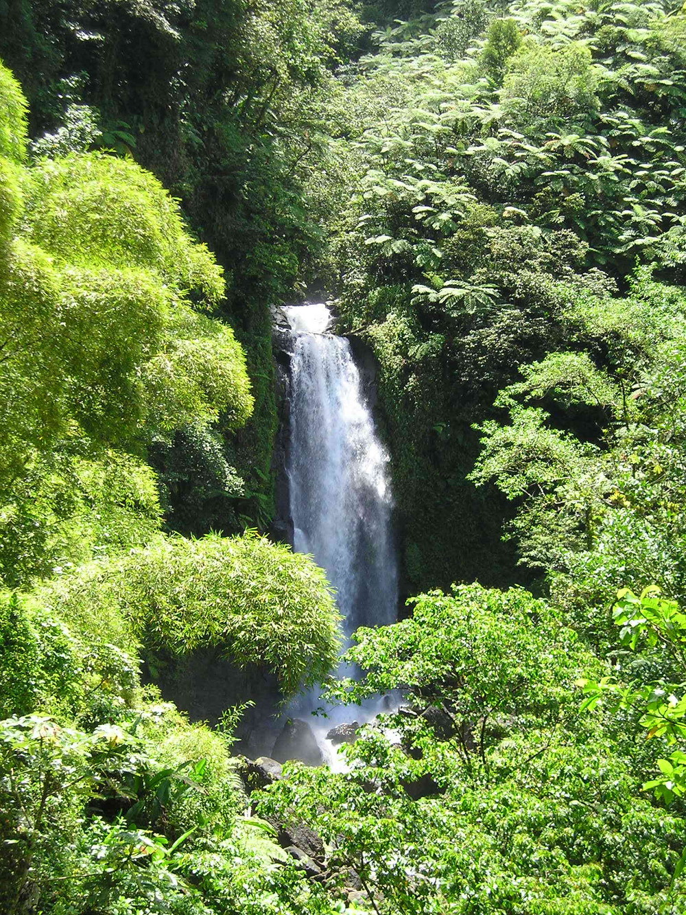 Dominica waterfall Double-Barrelled Travel