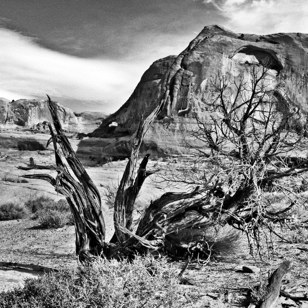 Utah landscape Double-Barrelled Travel