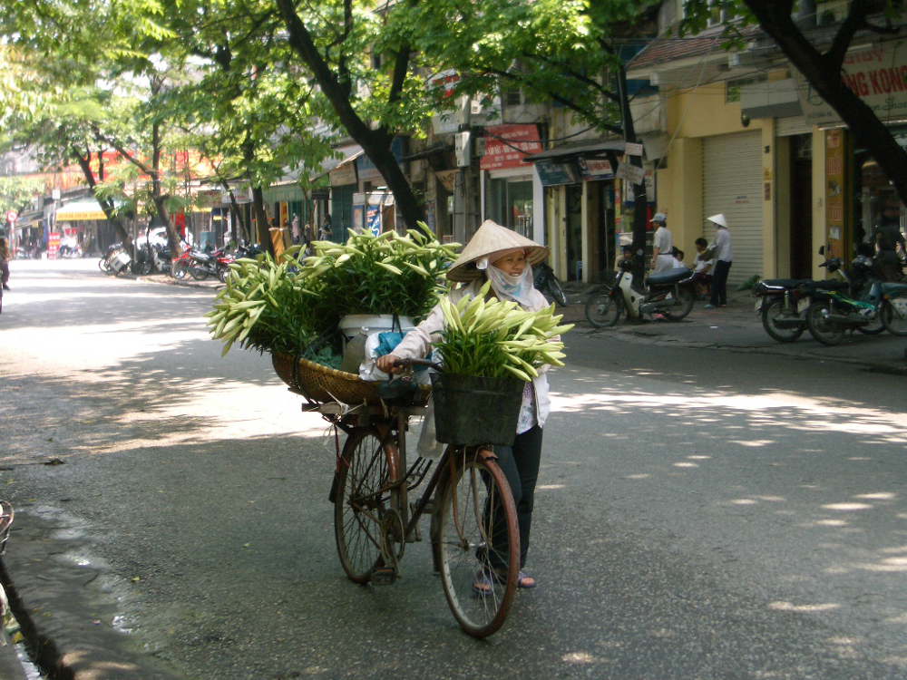 Vietnam bicycle Double-Barrelled Travel