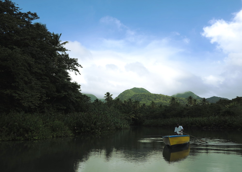 Rowing down the Indian River Dominica Double-Barrelled Travel