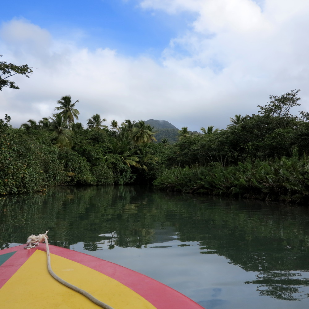 Sailing down the Indian River Dominica Double-Barrelled Travel
