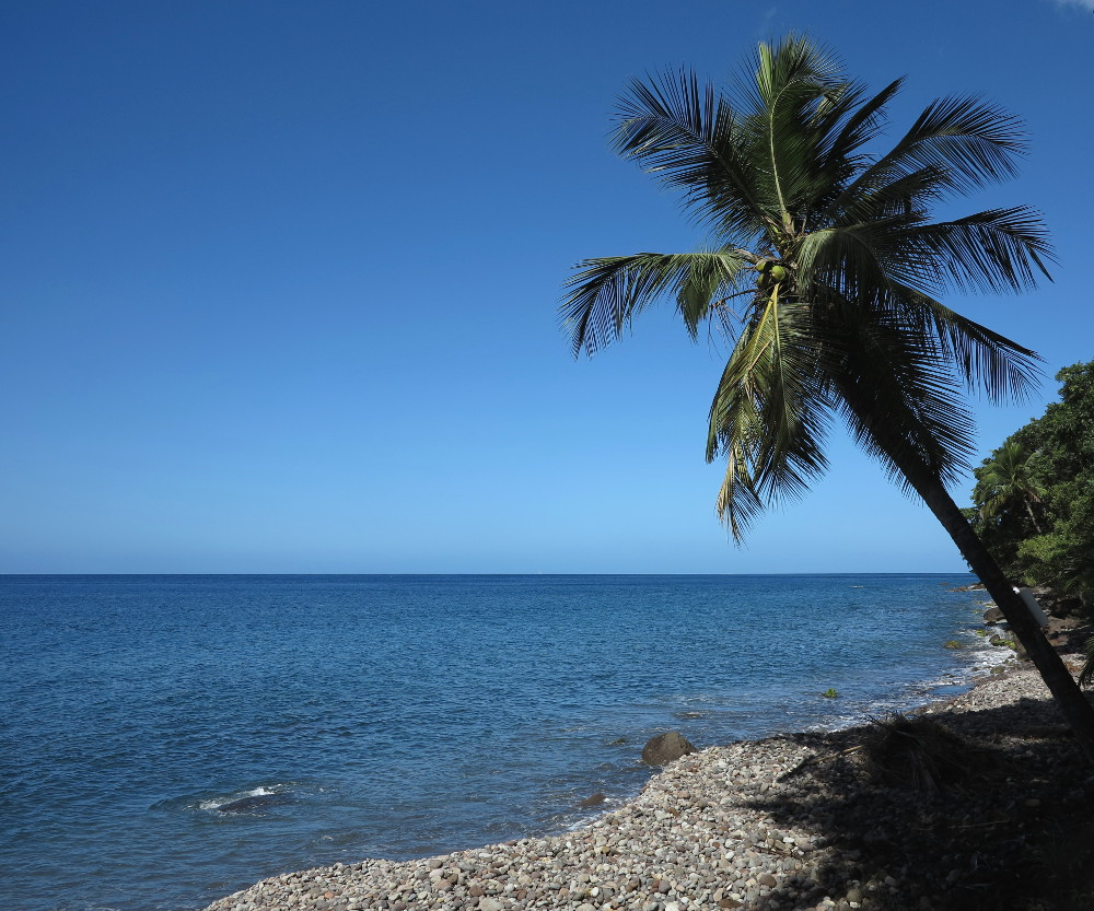 Beach at Champagne Reef Dominica Double-Barrelled Travel