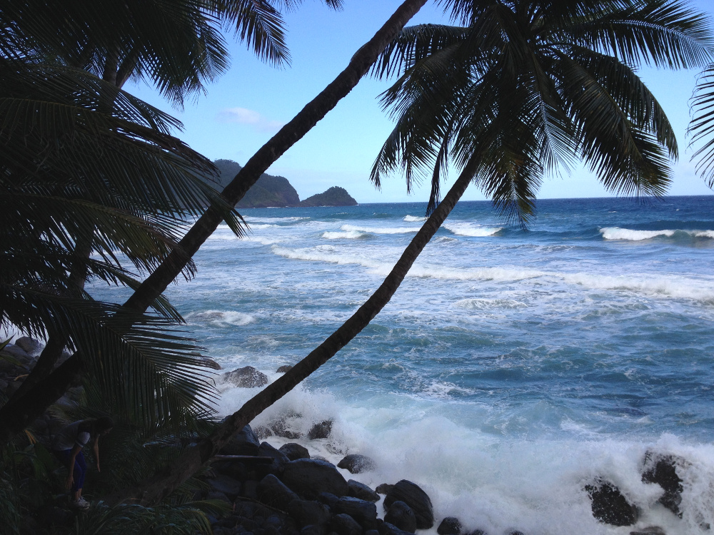 Beautiful beach Wavine Cyrique Dominica Double-Barrelled Travel