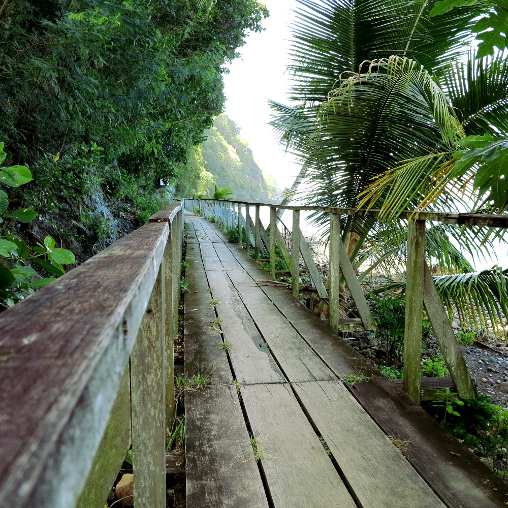 Boardwalk at Champagne Reef Dominica Double-Barrelled Travel
