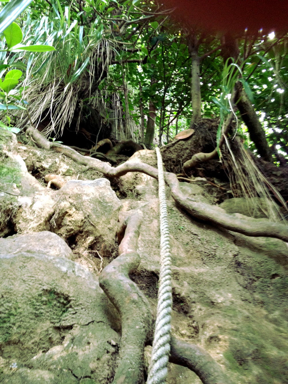 Rope at Wavine Cyrique Dominica Double-Barrelled Travel