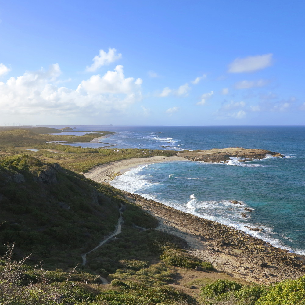 View from Pointe de chateaux Guadeloupe Double-Barrelled Travel