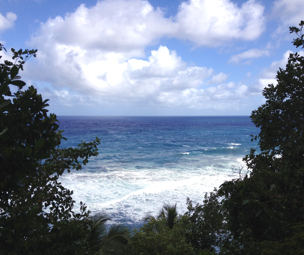 View from top of Wavine Cyrique Dominica Double-Barrelled Travel