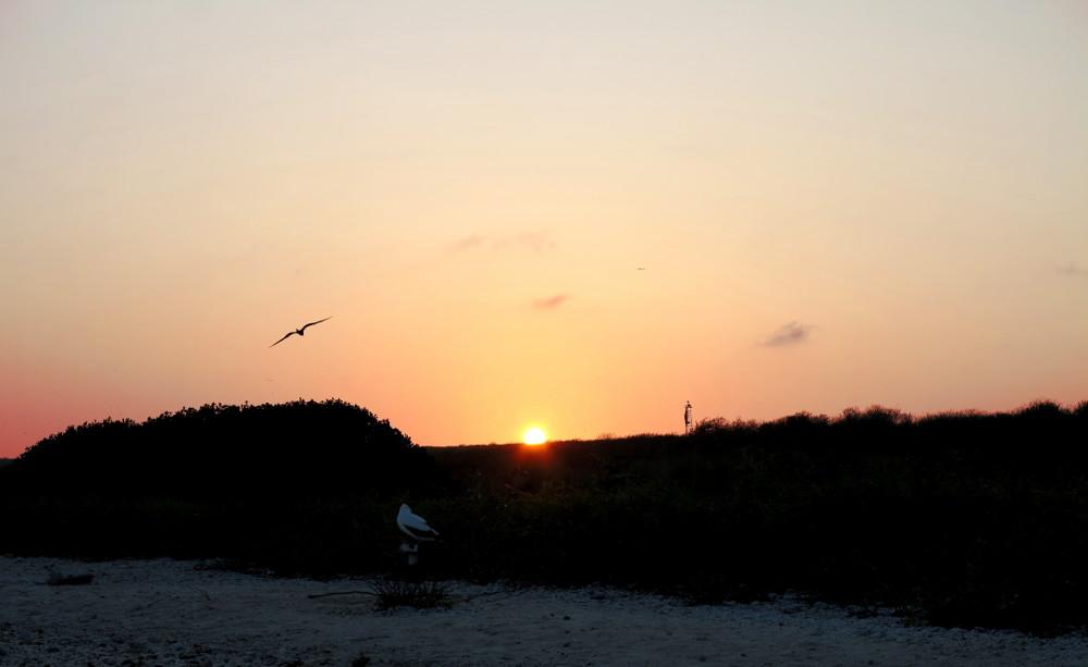 Sunset Galapagos Double-Barrelled Travel