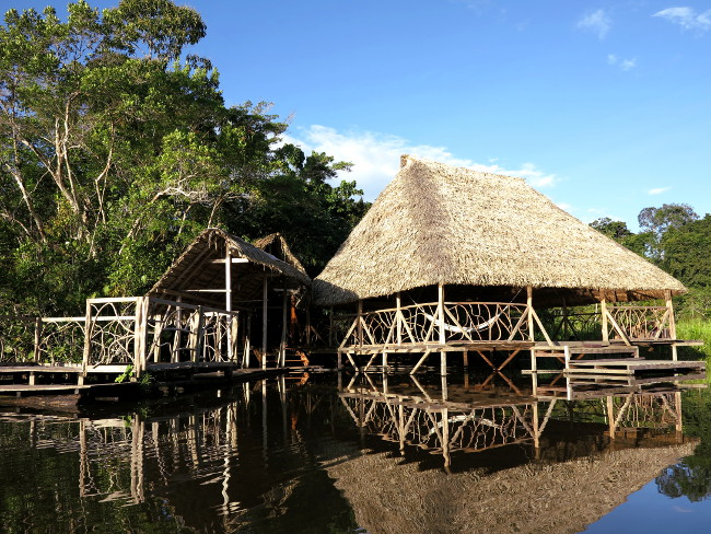 Sani Lodge Ecuador Amazon Double-Barrelled Travel