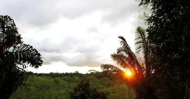 Ecuador Amazon jungle sunset Double-Barrelled travel