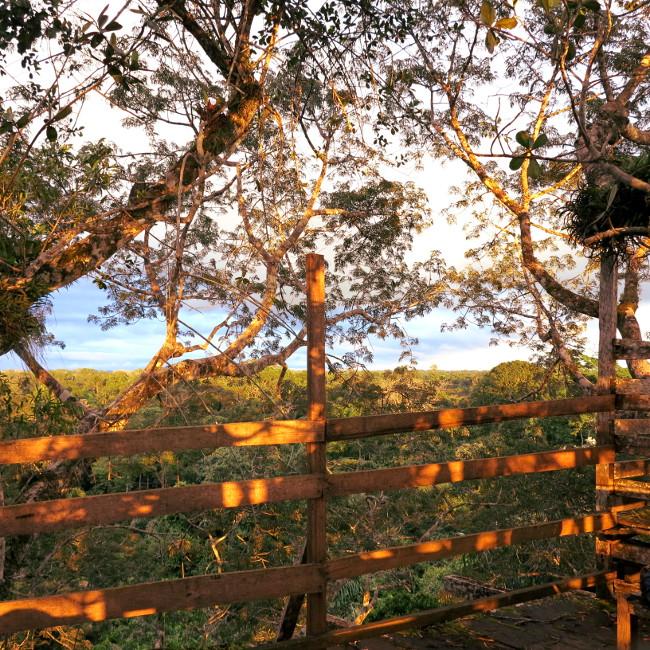 Ecuador dappled light jungle sunset Double-Barrelled travel