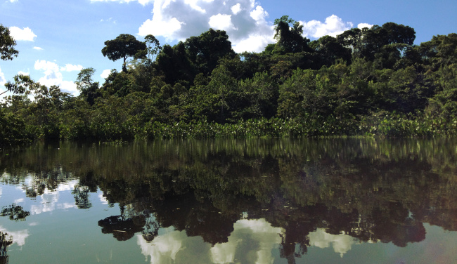 River in the Ecuador Amazon Double-Barrelled Travel