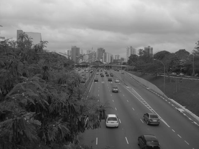 Jungle of Stone Brazil Double-Barrelled Travel