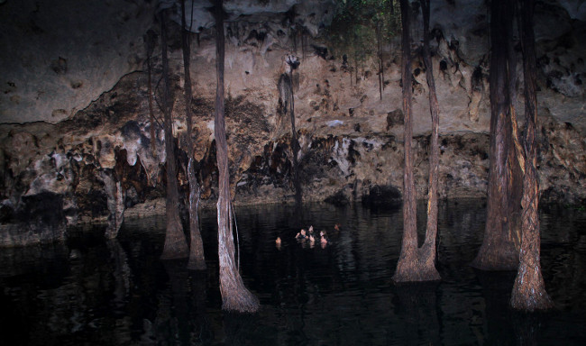 Inside the Xenotes Oasis Maya cenote Double-Barrelled Travel