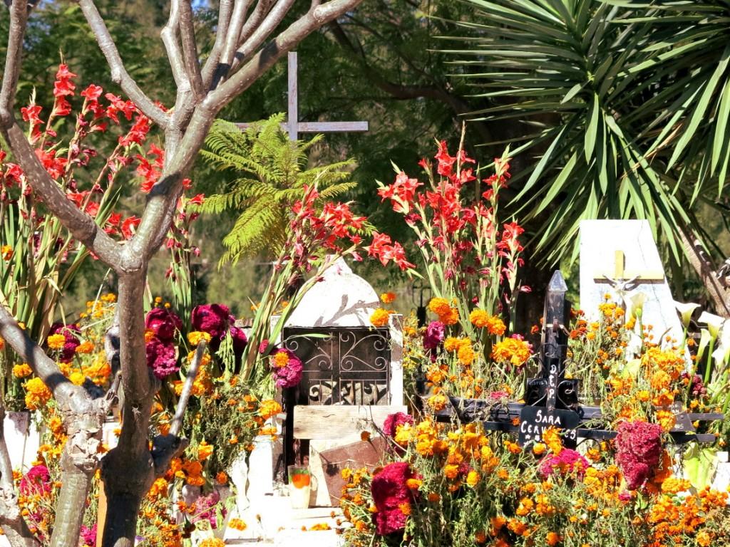 Oaxaca cemetery  Double-Barrelled Travel