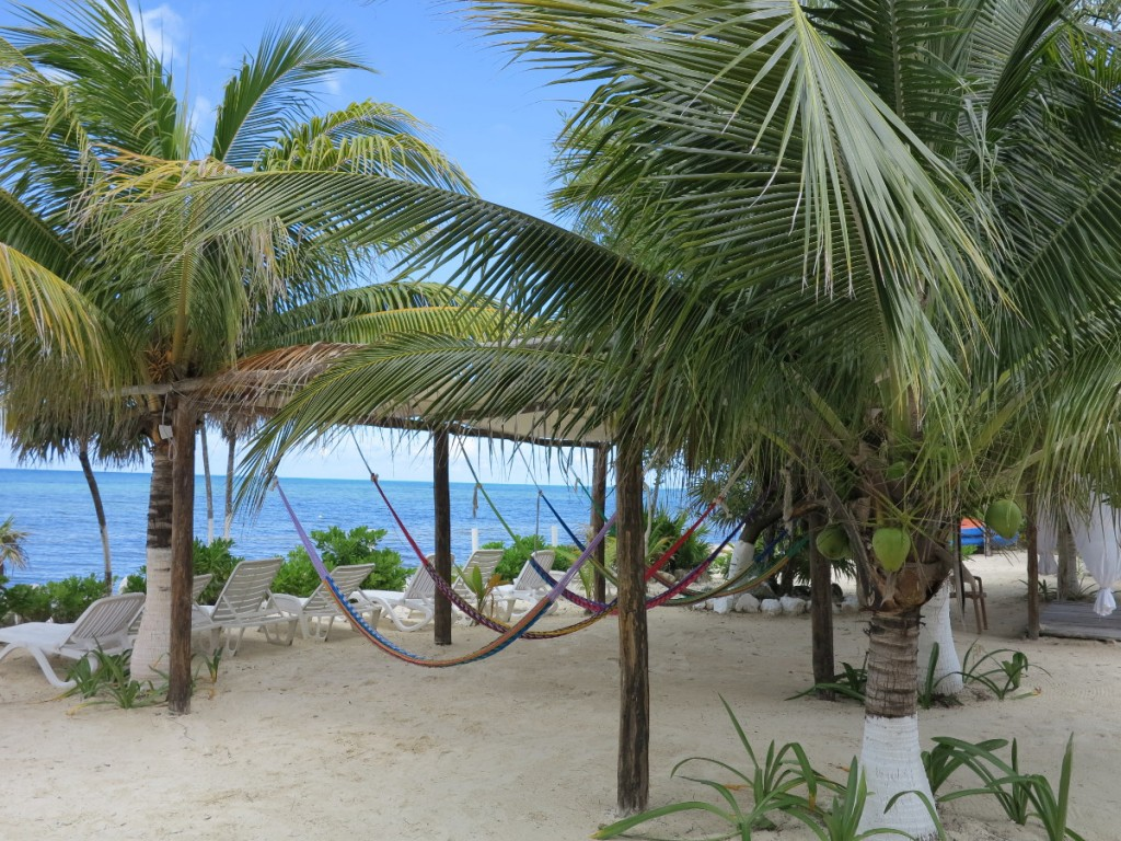 Hammocks in Cozumel Mexico Double-Barrelled Travel
