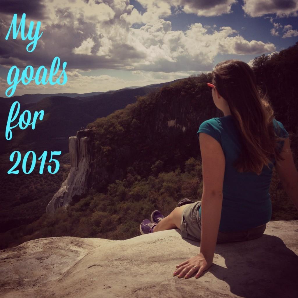goal setting 2015
