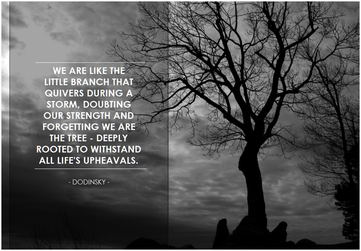 Dodinsky quote via BK Flickr Double-Barrelled Travel