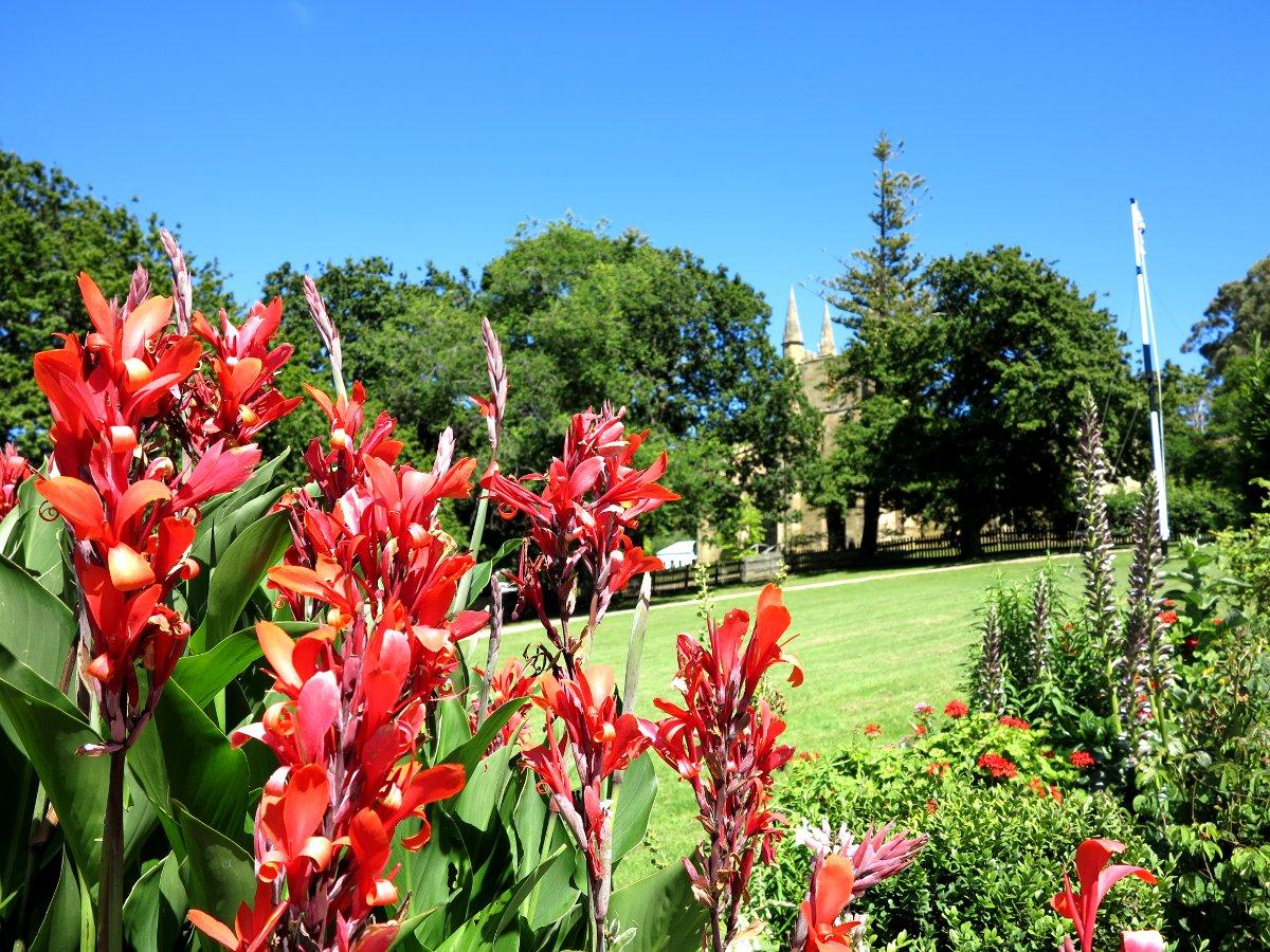 Port Arthur garden flowers Double-Barrelled Travel