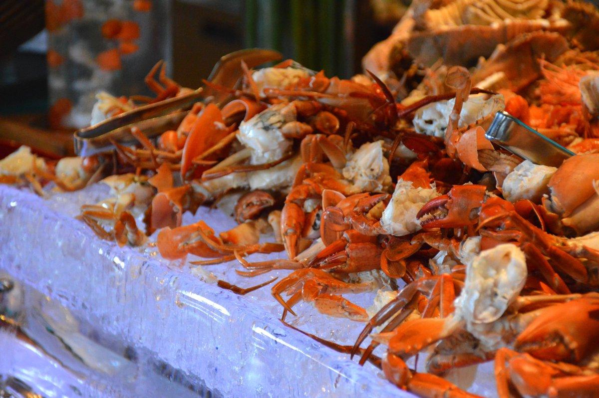 W Retreat shellfish Bali Double-Barrelled Travel