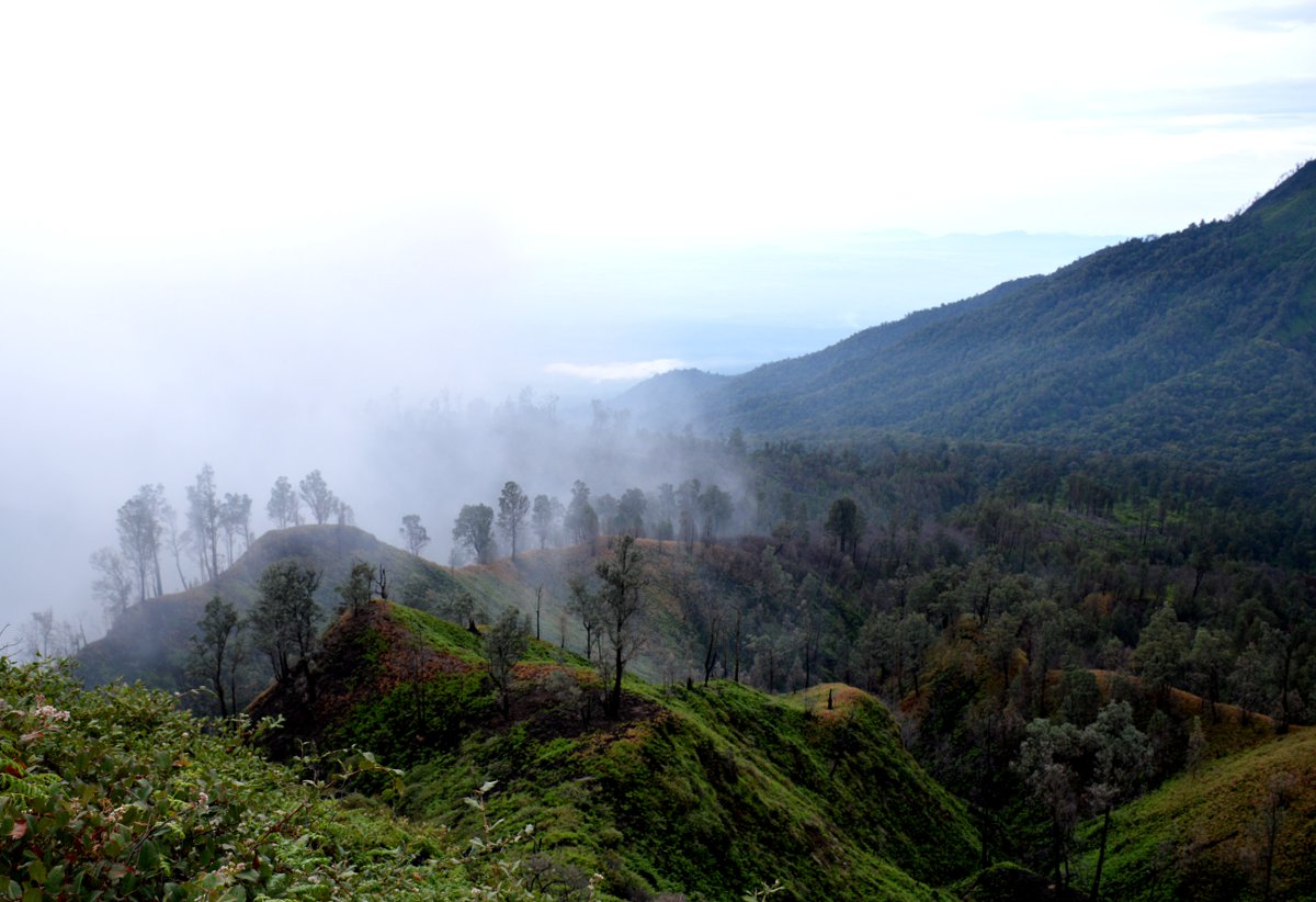 Greenery Ijen Volcano Java Double-Barrelled Travel