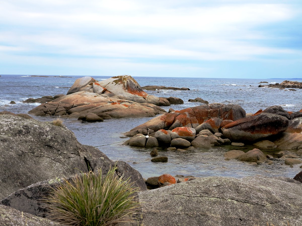 Bay of Fires Tasmania Double-Barrelled Travel