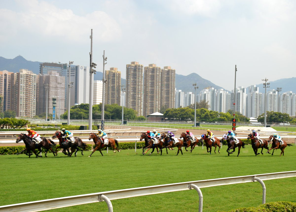 Sha tin horse race Hong Kong Double-Barrelled Travel