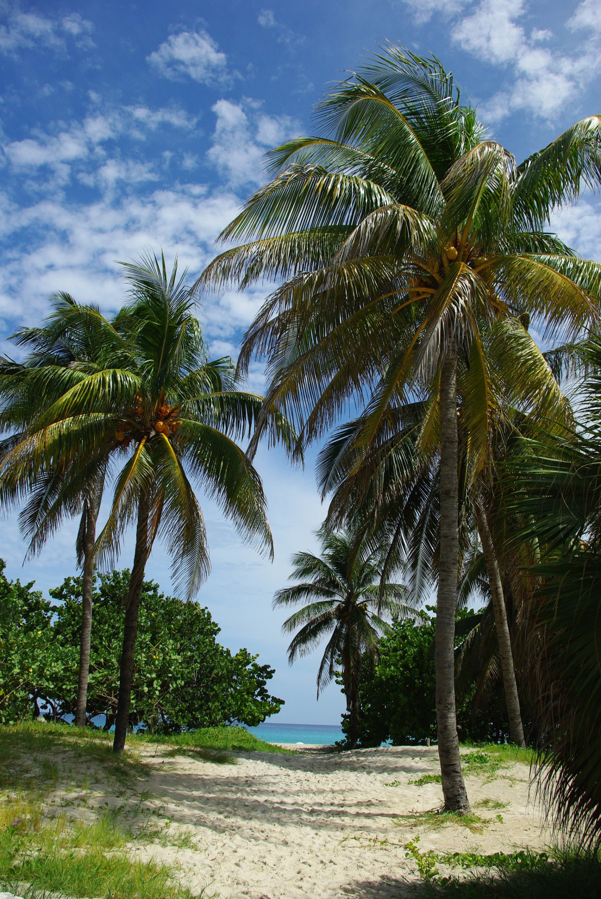 Varadero Cuba Iker Merodio Double-Barrelled Travel