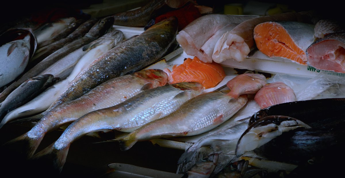 Algarve seafood Portugal Double-Barrelled Travel