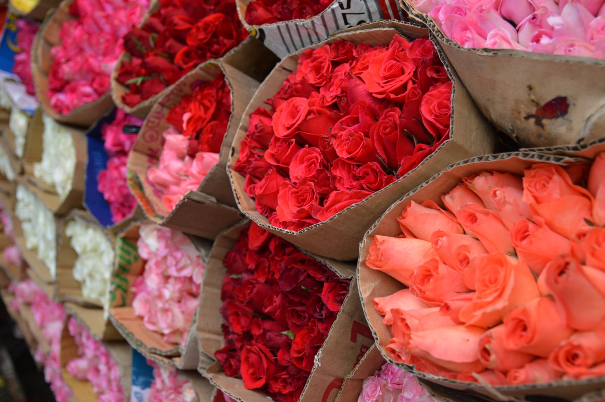 Roses at flower market Saigon Double-Barrelled Travel