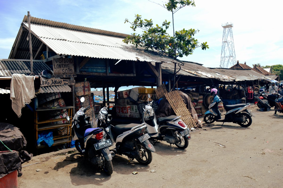 Scooters Bali South East Asia Double-Barrelled Travel