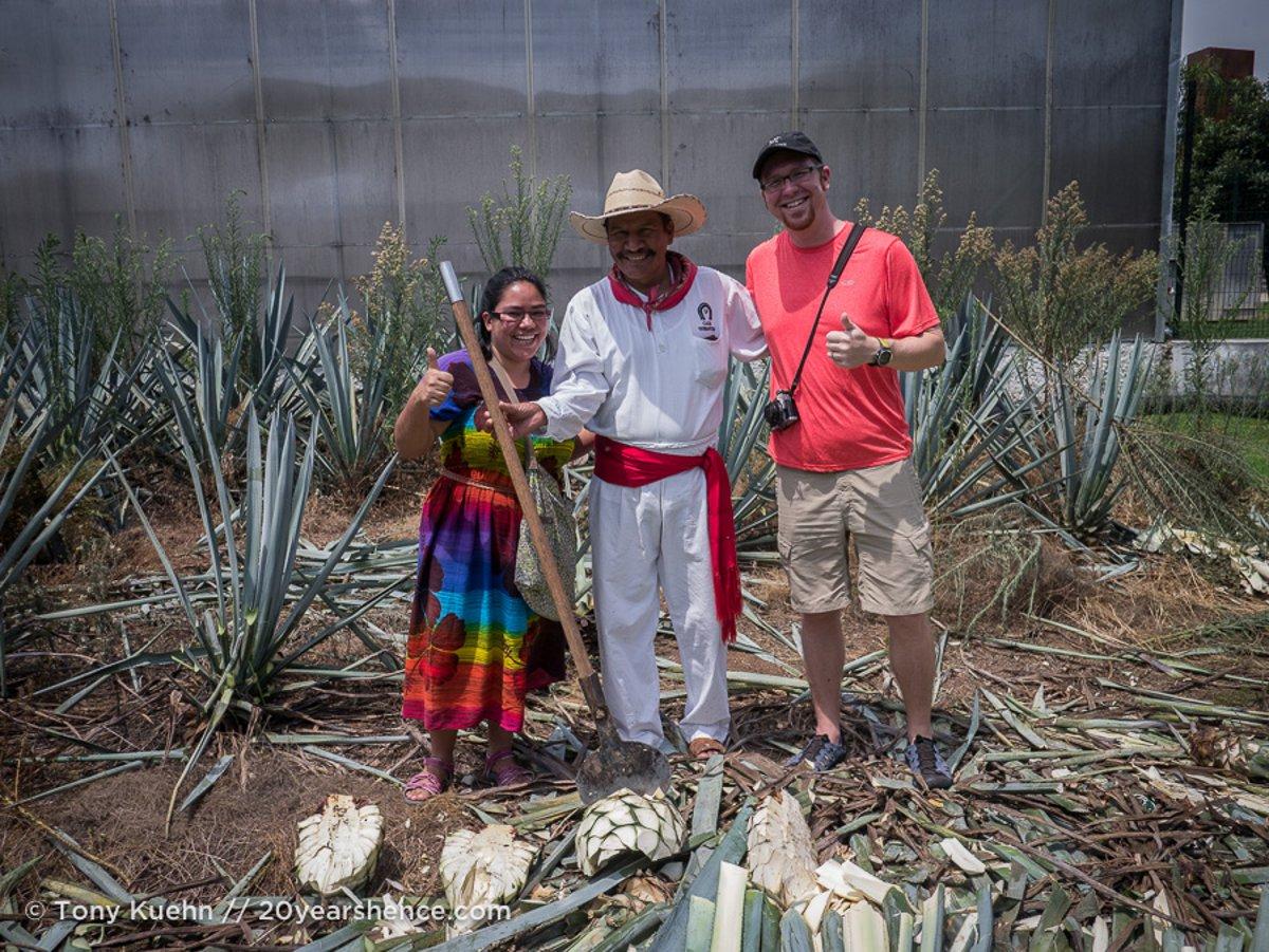Stephenie Mexico tequila fields
