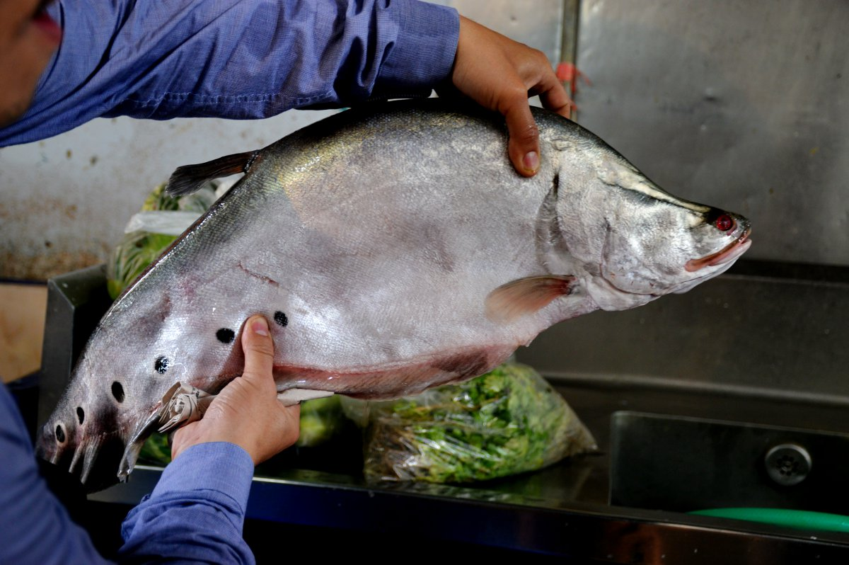 Fish Silom Cooking School Double-Barrelled Travel