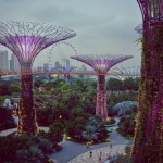 Gardens By The Bay Double-Barrelled Travel