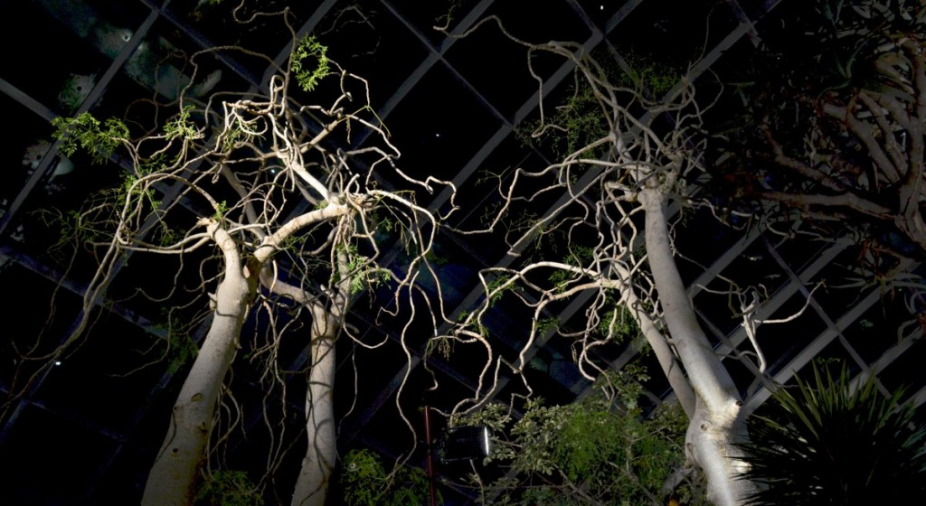 Gardens By The Bay trees Double-Barrelled Travel