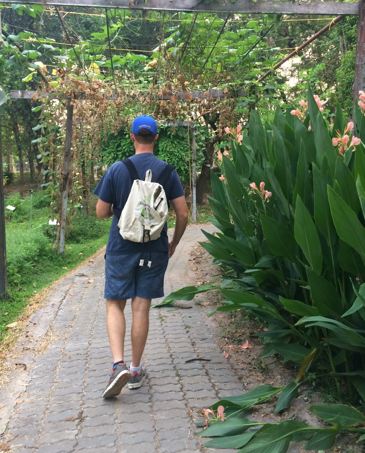 Chiang Mai BagWalkers Double-Barrelled Travel
