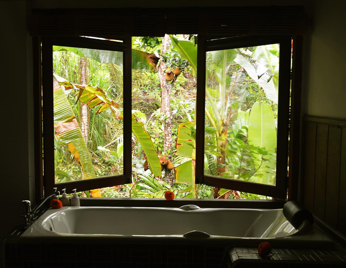 Things to do in Ubud Bali Botanica Double-Barrelled Travel