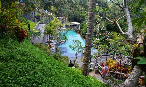 Things to do in Ubud Jungle Fish Double-Barrelled Travel