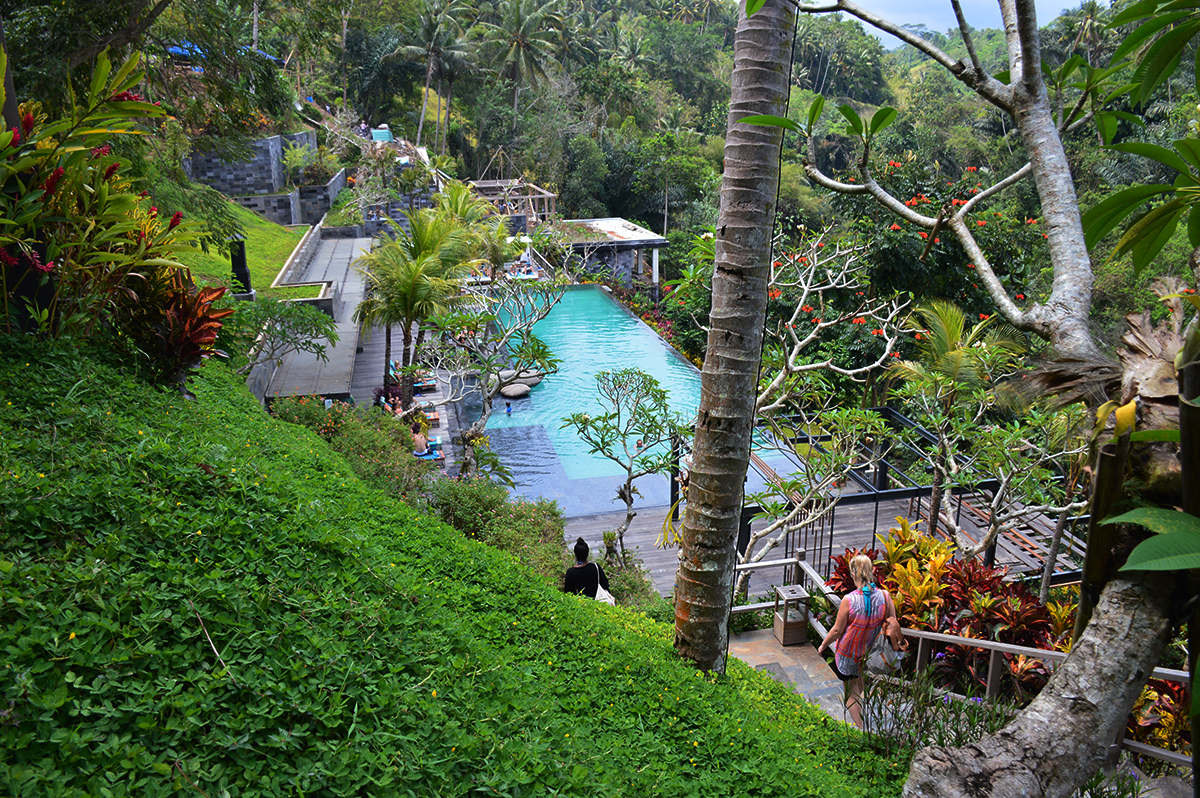 Things To Do In Ubud Double Barrelled Travel