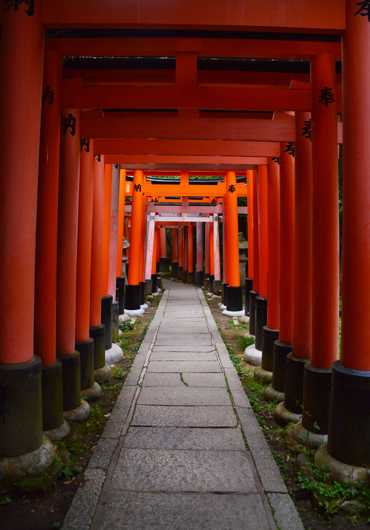 Fushimi Inari Taisha walkway Double-Barrelled travel